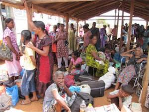 IDP-Cheddikulam_Manik_Farm