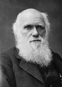 Darwin-213x300
